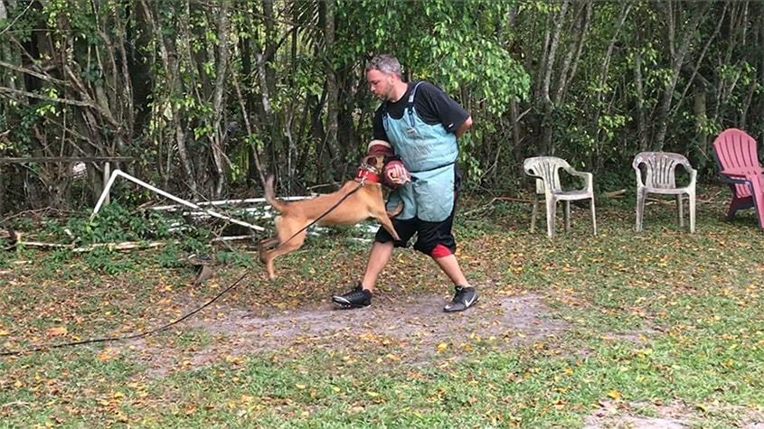 Vom Artiles Kennel K9 Training Center For Personal